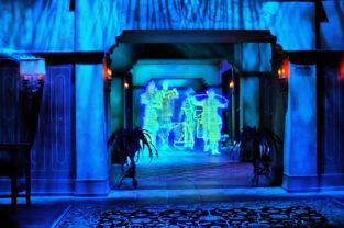 Famous Orlando Themed Environments